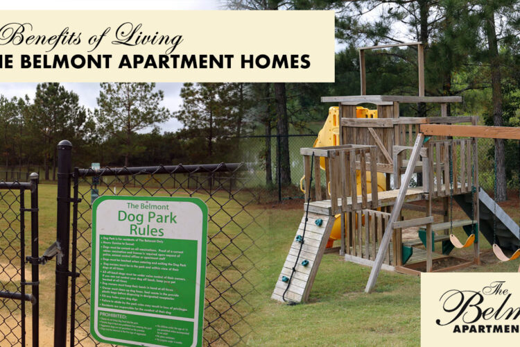 5 Benefits of Living at The Belmont Apartment Homes