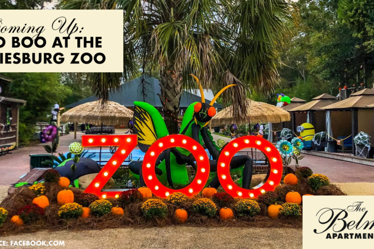 Coming Up: Zoo Boo at The Hattiesburg Zoo